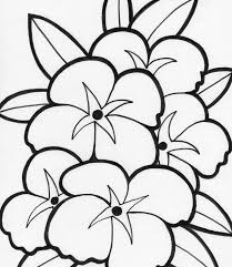 Spotlight Single Flower Coloring Pages Printab 15272 Unknown At Color