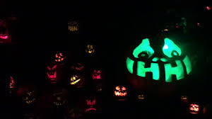Roger Williams Pumpkin Festival 2017 by Roger Williams Park Jack O Lantern Spectacular Laughing Tree