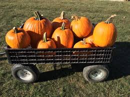 Noblesville Pumpkin Patch by Smith Family Farms Pumpkin Patch Home Facebook