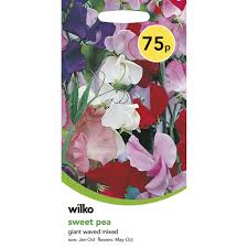 Wilko Sweet Pea Giant Waved Seeds Heathcote And Ivory Sweet Pea Honeysuckle Bathing Flowers Sweetpeas Torontos Best Florist Baby Rentals For Your Scottsdale Phoenix Az A Chair That Lasts From Infants To Adults Nuna Zaaz High Parties Decorating Kits Kid In Faux Fur Coat Skirt Sitting On Highchair Holding Amazoncom Gaags Water Resistant Table Cloth Seamless Pattern With Peas Gardening Article Mitre 10 Childcare Pod Natural Titanium Baby High Chair Mini Grey Sweetpea Willow Linkedin Babybjorn