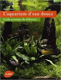 aquarium d eau douce fr l aquarium d eau douce guide pratique du débutant