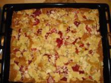 2 erdbeer rhabarber kuchen mit schmand und vanillepudding