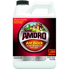 Flying Ants In Bathroom Window by Carpenter Ants In House 5 Most Effective Repellent Help You