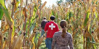 Toms Maze Pumpkin Farm by 17 Of The Most Incredible Ohio Corn Mazes To Get Lost In