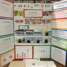 Science Fair Food Dye IMG 4561 4562 4563 4564 4565 4566