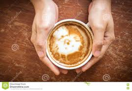 Download Woman Hands Holding Cup Of Coffee Top View Cute Latte Art Cat