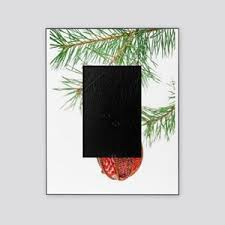 Christmas Tree Ornament Picture Frame