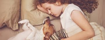 die optimale schlaftemperatur vasner tipps für nächtliche