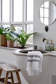 7 zimmerpflanzen die sich gut fürs badezimmer eignen