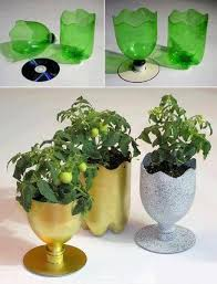 Reusing Plastic Bottles Check Out
