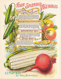 file may s catalogue of northern grown seeds plants bulbs and