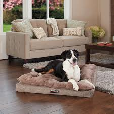 Top Rated Orthopedic Dog Beds by Dog Beds Costco