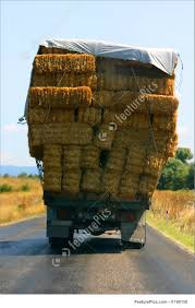 Overloaded Hay Truck In The West Coast Of Turkey Image Truck Carrying Hay Rolls In Davidsons Lane Moore Creek Near Hay Ggcadc Flickr Bale Bed For Sale Sz Gooseneck Cm Beds Parked Loaded With Neatly Stacked Bales Near Cuyama My Truck And The 8 Rx8clubcom On A Country Highway Stock Photo Image Of Horse Ranch Filescott Armas Truckjpg Wikimedia Commons Hits Swan Street Richmond Rail Bridge Long Delays Early Morning Fire Closes 17 Myalgomaca Oversized Load On Chevy Youtube Btriple Trucks Allowed Oxley To Ferry Relief The Land A 89178084 Alamy