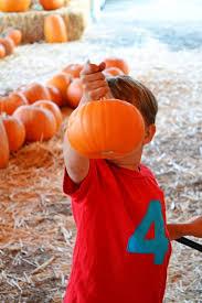 Norms Pumpkin Patch 2015 by Pumpkin Patch Live Little Miss Momma
