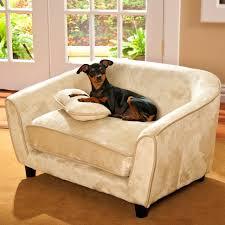 Xlarge Dog Beds by Bedroom Archaicfair Dog Beds Bolster Designer For Medium Sized