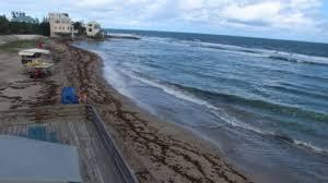 Bathtub Beach Stuart Fl Beach Cam by Stuart Bathtub Beach Florida Usa Webcams