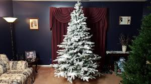 Flocked Artificial Christmas Trees Sale by Vickerman Utica 7 5 U0027 Snow Flocked Christmas Tree Review Youtube
