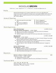 Example Of Resume Summary Lovely Unique Sample Server Incredible 53 Elegant