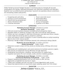 Account Manager Resume Sample Advertising Executive