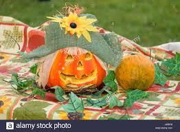 Spirit Halloween Raleigh Nc Hours by 100 Spirit Halloween Phoenix 100 Spirit Halloween Store