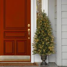 Downswept Slim Christmas Tree by The Holiday Aisle Downswept Douglas 6 U0027 Green Fir Artificial
