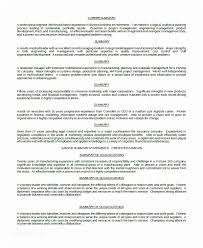 Professional Summary For Resume 8 Examples Pdf Word