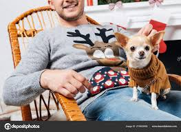 Partial View Man Rocking Chair Little Chihuahua Dog Knees Decorated ... These Elder Dogs Are Missing Someone From The Rocking Chair Favogram Puppy Dog In Tadley Hampshire Gumtree On A Stock Photo Download Image Now Istock Vintage Grandpa Man Wdog Pipe Rocking Chair Tirement Fund Bank Taking Akc Trick To The Next Level Top Notch Toys Miniature Schnauzer Wooden Lessons From Part Two Mothering Spirit Whats A Good Rocking Chair Quora Hd Welcome Are Love Puppies Lovers