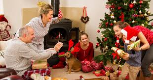 Are Christmas Trees Poisonous To Dogs Uk by Can Your Dog Eat Chocolate The Festive Treats Which Could Poison
