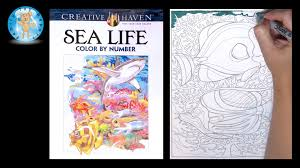 Creative Haven Sea Life Adult Coloring Book Color By Number Two Fish