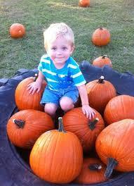 Oklahoma Pumpkin Patches by Sand Springs Pumpkin Patch Festival Sand Springs Ok Photos U0026