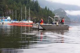 Tug Boat Sinks by Tugboat Sinks Off Point Atkinson