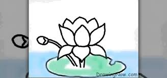 How to Draw a lotus flower on a puter  Drawing & Illustration WonderHowTo