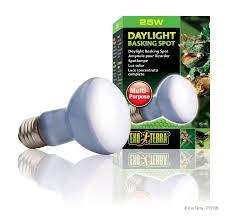 38 best reptiles iluminaci祿n images on bulbs
