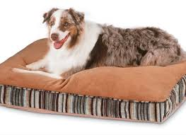 Dr Fosters Dog Beds Dog Dog Beds and Costumes