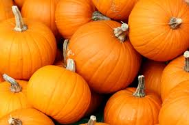 Libbys Pumpkin Puree Uk by Pumpkin Pie Recipe Uk