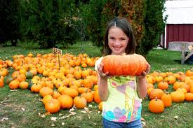 Barnesville Pumpkin Festival Times by Thea U0027s Pumpkin Patch