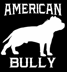 American Bully Vol.1 Decal . Put It On Your Car, Truck, Boat, ATV ... Slammed Ford Ranger Truck Single Cab Vinyl Decal Sticker 25 X 85 Dump Party With Balls Favor Stickers Round Printed Pipsy Dsv Monolit Company Truck With The New Frotcom Fleets 114 Stickersheet Cautionsigns Ucktrailer Accsories How To Install American Flag Back Window Sticker Food Lorry Car Wrapping Vector Isolated Paper Label Delivery Transport Design Your Own Custom Van Vehicle Prting Services Lumber Moore Dealers Australia Giveaway