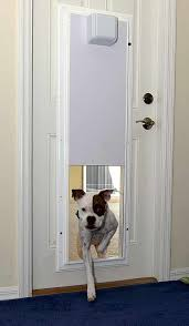 Best Pet Doors For Patio Doors by Selecting The Best Dog Door For Your Pets Pictures Of Dogs And All