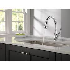 Delta Dryden Faucet Stainless by Delta Faucet Foundations Standard Kitchen Faucet With Side