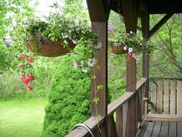 Flower Pots Ideas For Front Porch Traditional Design With Rustic Acasia Wood Floor