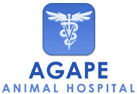 agape animal hospital agape animal hospital veterinarian in whitinsville ma usa home