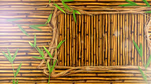 100 Bamboo Walls Background Stock Motion Graphics Motion Array