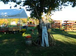 Pumpkin Farms In West Michigan by List Pumpkin Patches Hayrides And Corn Mazes In West Michigan