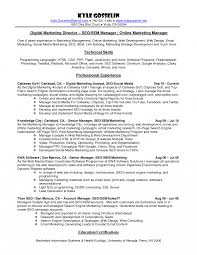 Awesome Collection Of Internet Marketing Executive Resume Brilliant Online Sample Specialist Template