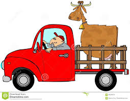 Truck Hauling A Cow Stock Illustration. Illustration Of Animal ... How Event Hauling Stands Out In The Trucking Industry Pricing Junk Removal And Hauling Services King Heavy Equipment Cargo 5618409300 24hr Mechanical Trouble Disables Truck Large Windmill Blade Hshot To Be Your Own Boss Medium Duty Work Info Mammoet Transports Assembled Haul Breakbulk Events Media Contact Ventura Gravel Brokerage Cstruction Vintage Look Pickup Tree Christmas Holiday Ornament Rc Adventures Ford Aeromax 114th 6x4 Semi Excavator Farm Equipment Snags Guide Wire News Wnemcom Dump Asphalt On Inrstate Highway Blog