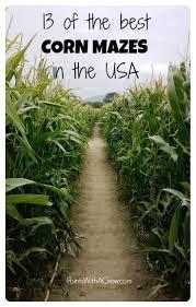 Denver Pumpkin Patch Corn Maze by Best 25 Haunted Corn Maze Ideas On Pinterest Corn Maze