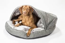 Cozy Cave Dog Bed Xl by Terrific Dog Bed Xlarge 27 Kong Dog Bed Xlarge Amazoncom Big