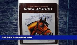 PDF Robert Kainer Coloring Atlas Of Horse Anatomy Audiobook Download