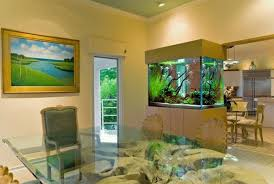 Ikea Aquarium Stand For Partition Between Dining Room And Small Kitchen Design Ideas