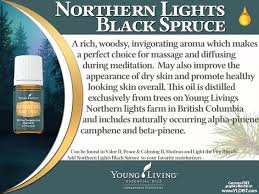 young living essential oils northern lights black spruce http